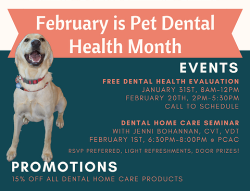 Because Bad Breath Isn't Normal – Dental Month 2017