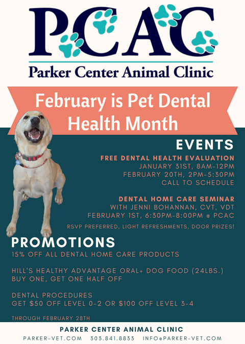 Celebrate Pet Dental Health Month with Us