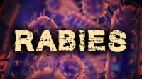 http://www.kktv.com/content/news/Skunk-tests-positive-for-rabies-in-Colorado-Springs-475872243.html